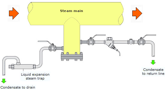 Typical Installation of Liquid Expansion Steam Trap