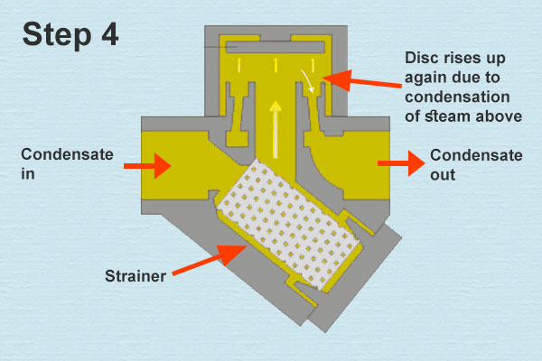 Thermodynamic Steam Trap Operation Step 4